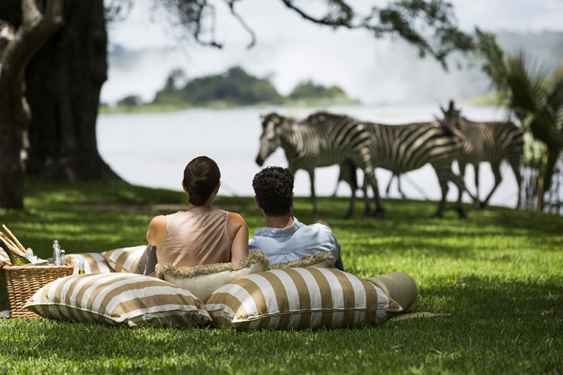 Go wild for your honeymoon and continue your unforgettable experience with a destination of adventure…an African Safari